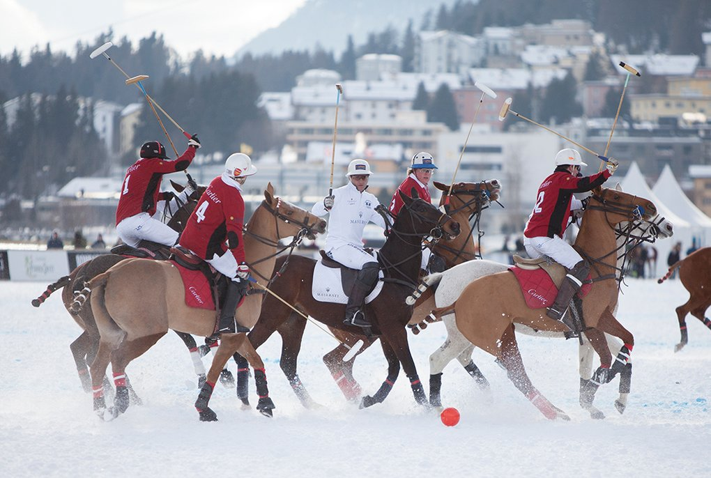 Das Spiel Der Pferde Auf Eis - Best Of The Alps